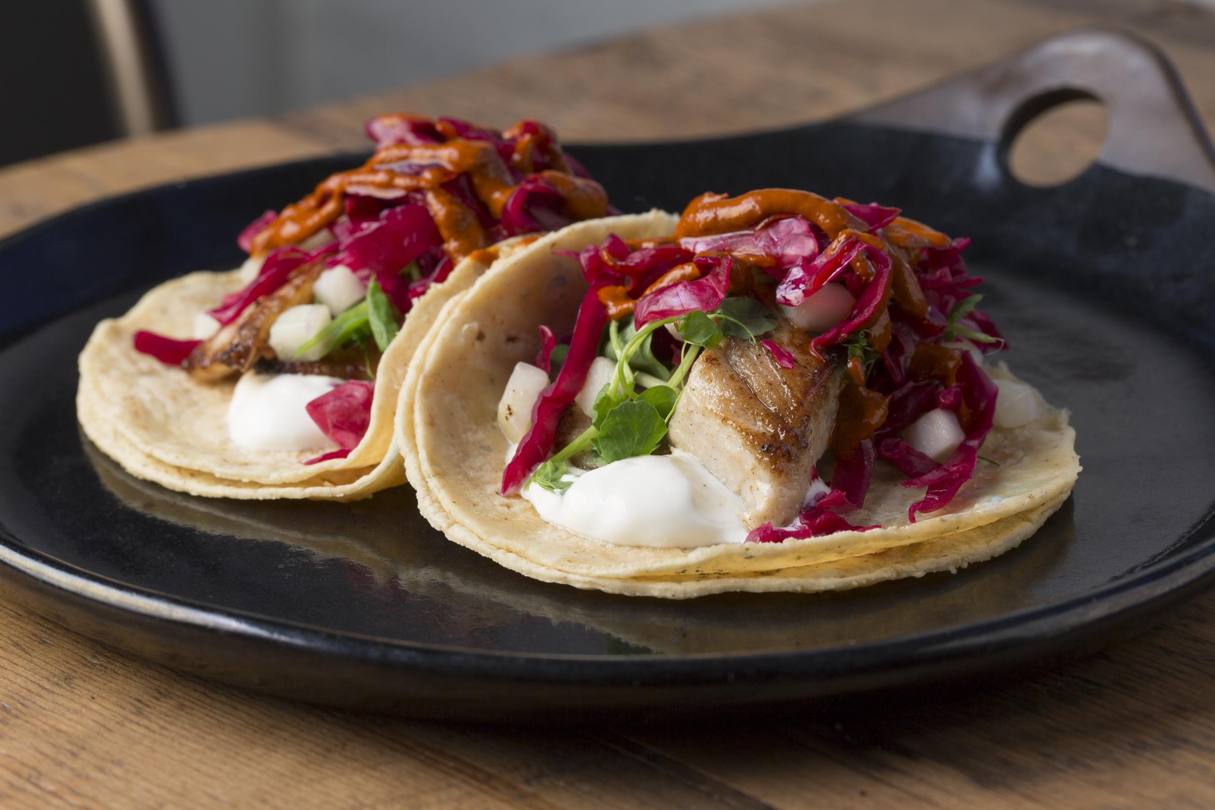 Cantina 1910_Fish Taco
